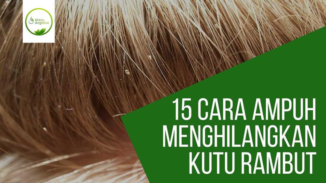 Cara Cepat Bikin Rambut Gimbal Sariayyu Sambung Plus Smoothing Dan Diwarnai 15 Menghilangkan Kutu Telurnya Paling Ampuh 100